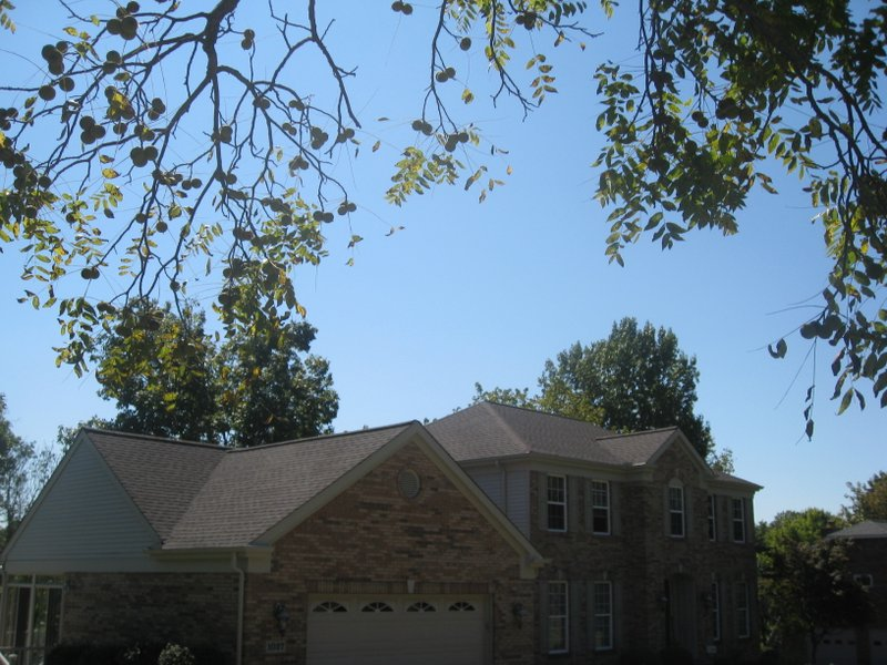 gaf-timberline-roof-replacement-2